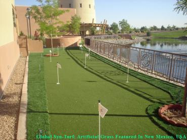 Synthetic Grass Germantown, Tennessee Golf Green, Backyards artificial grass