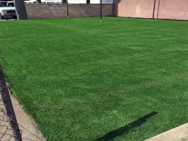 Artificial Grass Photos: Synthetic Grass Hopewell, Tennessee Eco Friendly Products