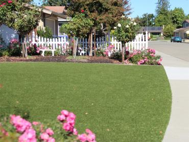 Artificial Grass Photos: Synthetic Grass Mountain City, Tennessee Landscape Photos, Front Yard Landscaping Ideas