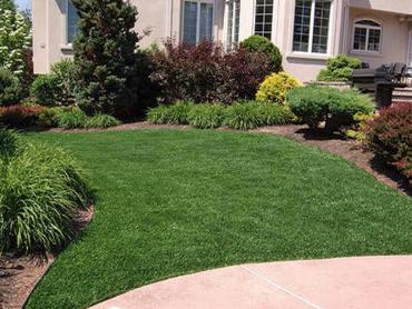Synthetic Lawn Linden, Tennessee Lawn And Landscape, Landscaping Ideas For Front Yard artificial grass