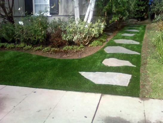 Artificial Grass Photos: Synthetic Lawn Olivet, Tennessee Backyard Deck Ideas, Front Yard Landscaping