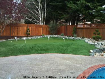 Synthetic Turf Brighton, Tennessee Roof Top, Backyard Landscaping artificial grass