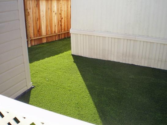 Artificial Grass Photos: Synthetic Turf Cross Plains, Tennessee Cat Playground, Backyard Landscape Ideas