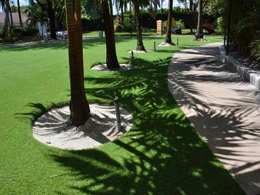 Artificial Grass Photos: Synthetic Turf Dickson, Tennessee Cat Playground, Commercial Landscape