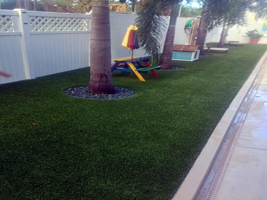 Artificial Grass Photos: Synthetic Turf Linden, Tennessee Landscape Rock, Backyard Ideas