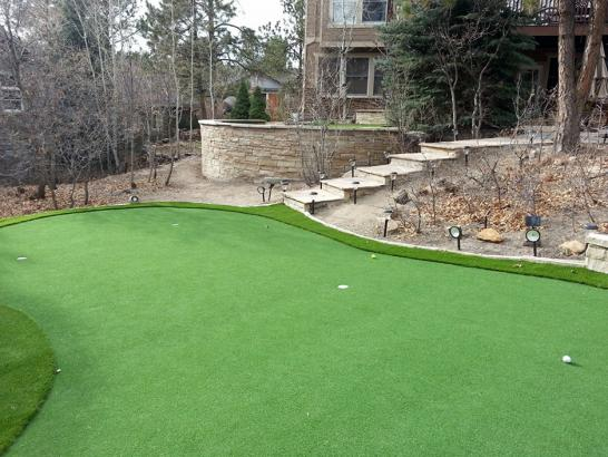 Artificial Grass Photos: Synthetic Turf Supplier Jasper, Tennessee Backyard Putting Green, Backyard Landscaping