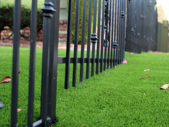 Artificial Grass Photos: Synthetic Turf Supplier Lafayette, Tennessee Home And Garden, Front Yard