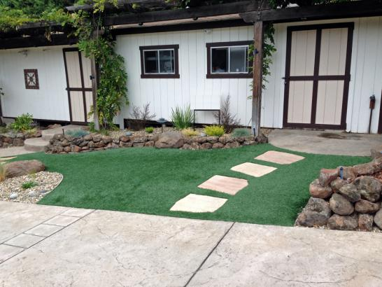 Artificial Grass Photos: Synthetic Turf Supplier Williston, Tennessee City Landscape, Front Yard Ideas