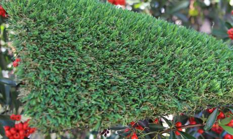 syntheticgrass Patriot Spring-76