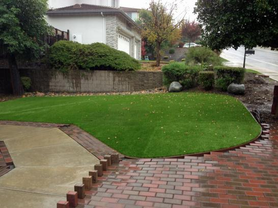 Artificial Grass Photos: Turf Grass Bethel Springs, Tennessee Gardeners, Backyard Landscaping