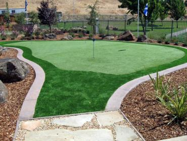 Artificial Grass Photos: Turf Grass Ducktown, Tennessee Outdoor Putting Green, Backyard