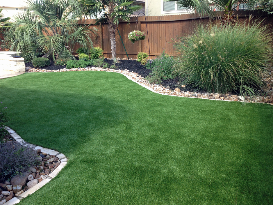 Grass Turf Crab Orchard, Tennessee Indoor Dog Park, Small ... on Artificial Turf Backyard Ideas id=72527